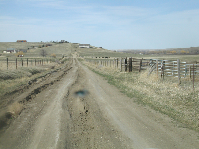 Photo of McCormick Road before reconstruction activities. Note poor road condition and significant ruts.